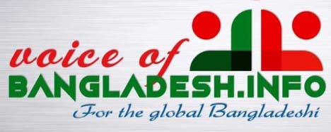 Voice Of Bangladesh | logo